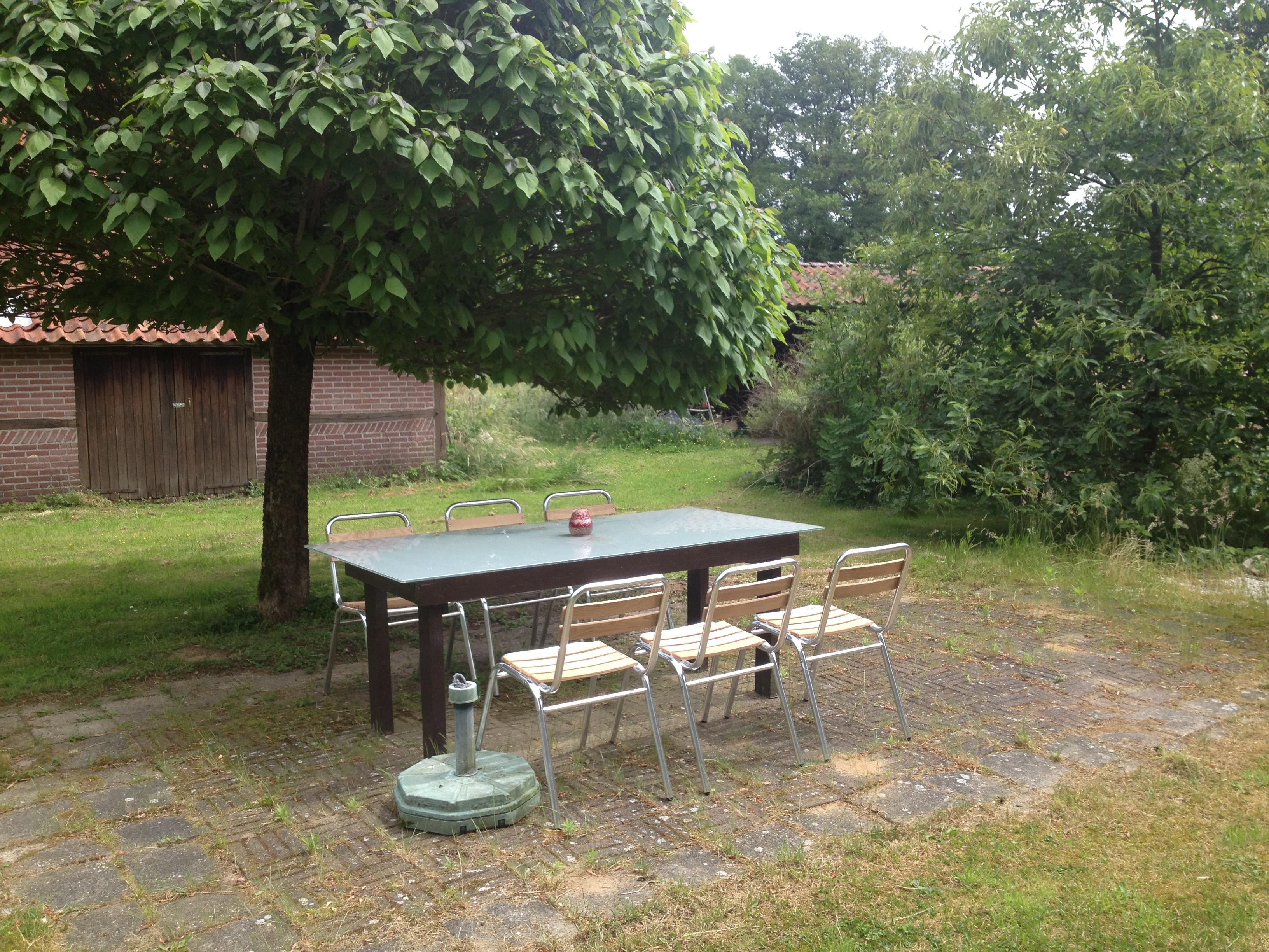 Vakantiewoning huren op de wijngaard wijngaard de reeborghesch - Zwembad onder het terras ...